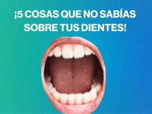 5 cosas que no sabías sobre tus dientes